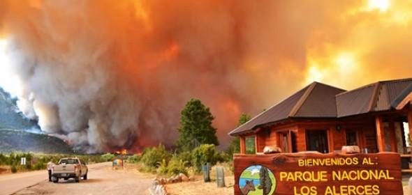 Greenpeace: Nuevo incendio en el Parque Nacional Los Alerces