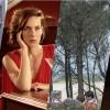 Ganadores de Premios No Oficiales del Festival Internacional de Cine de Mar del Plata